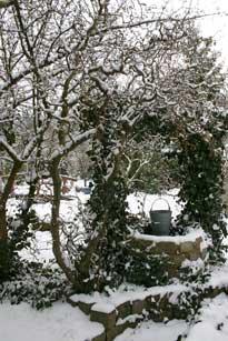 Team lang ein jahr am gartenteich for Gartenteich im winter